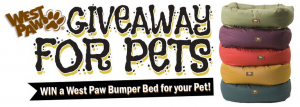 pet bed giveaway