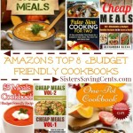 Amazon's Top 8  Budget Friendly Cookbooks 2